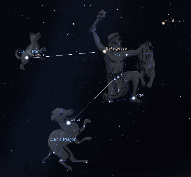 orion-and-dogs