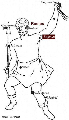 seginus stars
