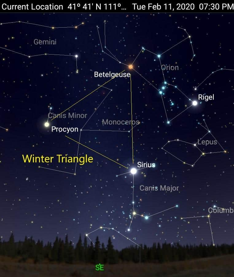 winter_triangle_-_credit_celestron_sky_portal_app_with_permission