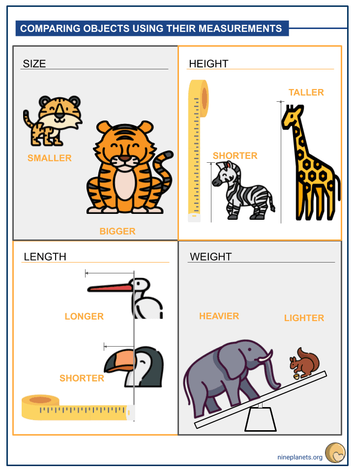 Comparing Objects using their Measurements Worksheets (2)