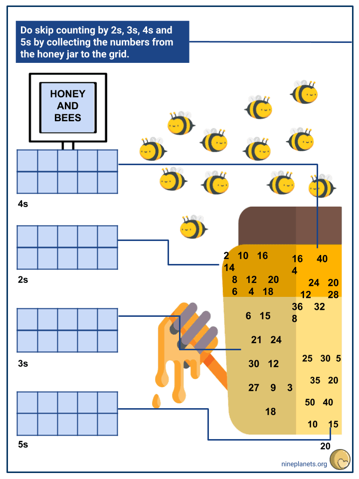 Skip Counting by 2,3,4 and 5 (3)