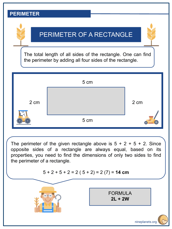 Solving Word Problems Involving Perimeter and Area of Rectangle (2)
